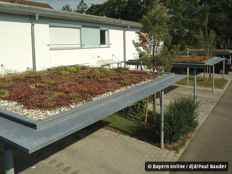 https://allgaeu.bayern-online.de/uploads/pics/djd_bauder_carport.jpg